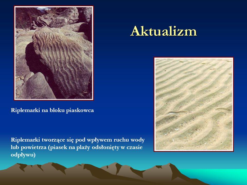 Aktualizm Riplemarki na bloku piaskowca Riplemarki tworzące się pod wpływem ruchu wody lub powietrza (piasek na plaży odsłonięty w czasie odpływu)