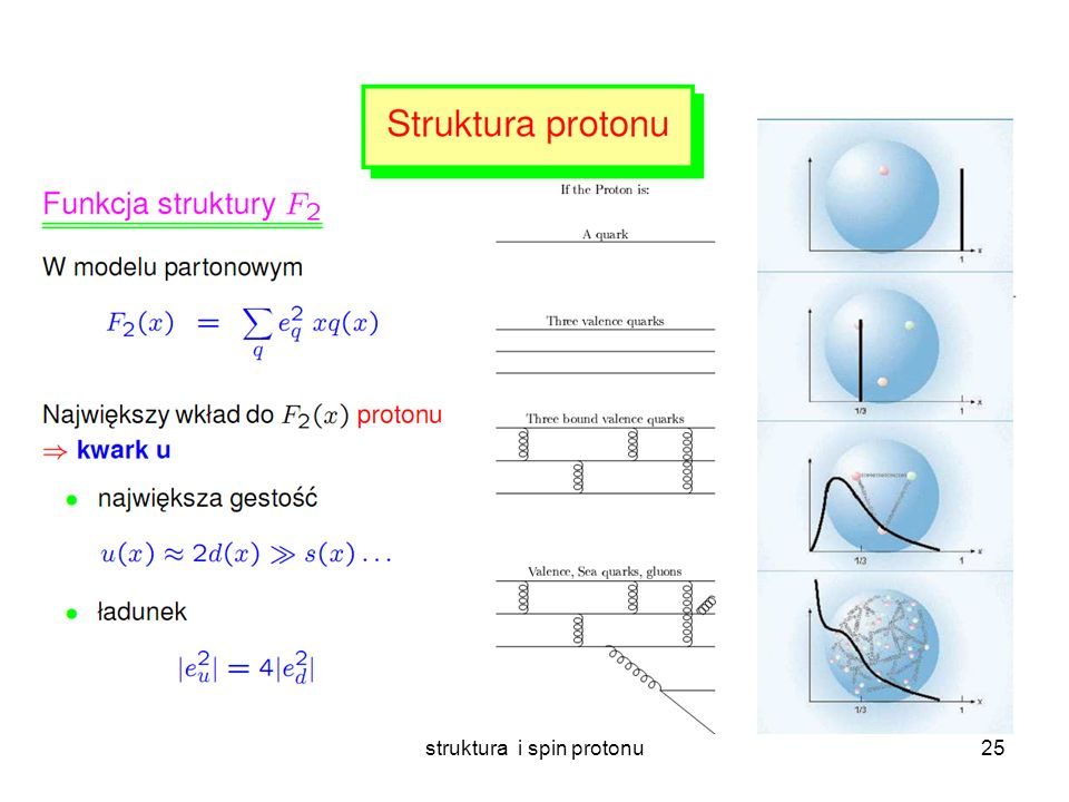 struktura i spin protonu24