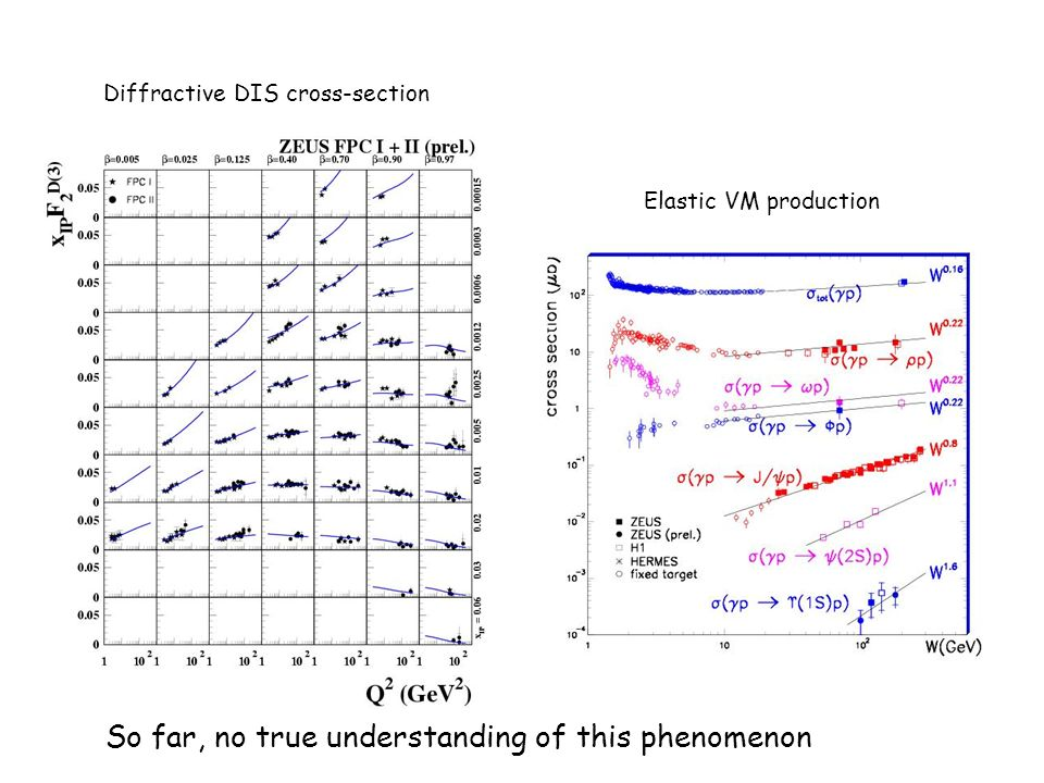 Diffractive DIS cross-section Elastic VM production So far, no true understanding of this phenomenon