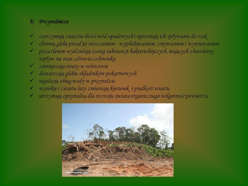 b)Przyrodnicze zatrzymują znaczne ilości wód opadowych i opóźniają ich spływanie do rzek chronią glebę przed jej niszczeniem - wypłukiwaniem, zmywanie