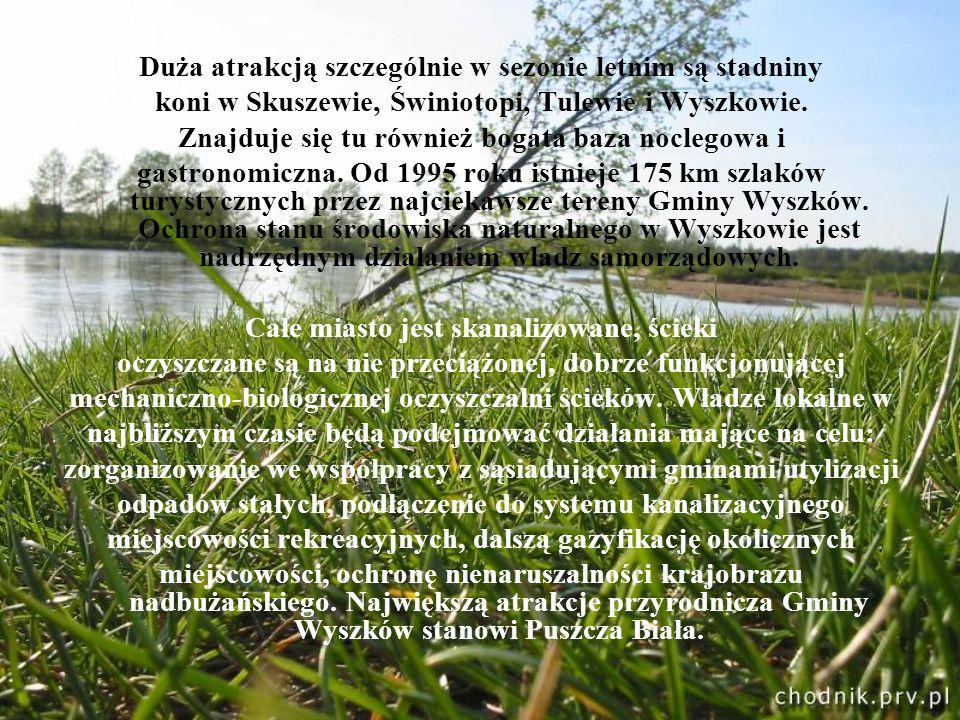 Duża atrakcją szczególnie w sezonie letnim są stadniny koni w Skuszewie, Świniotopi, Tulewie i Wyszkowie. Znajduje się tu również bogata baza noclegow