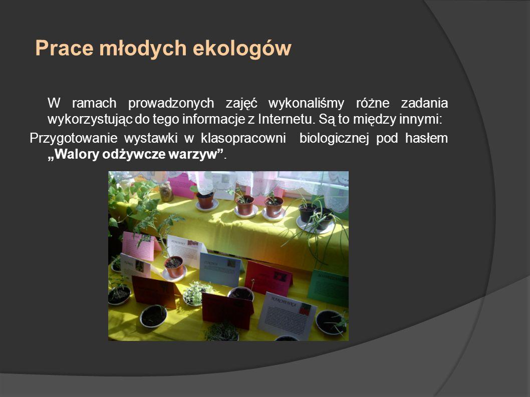 Prace młodych ekologów c.d.