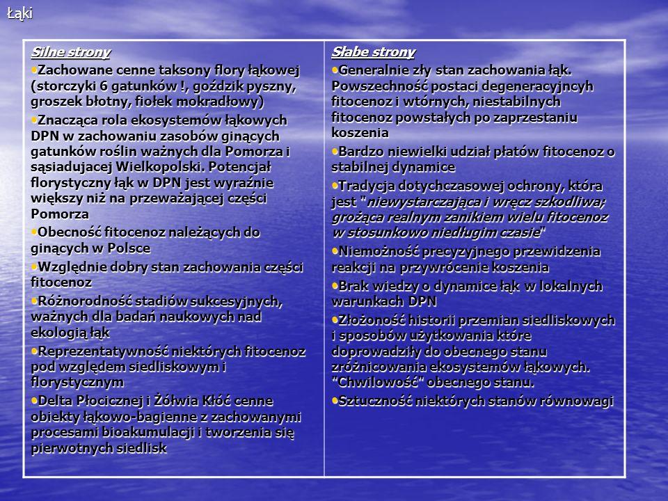 Łąki Silne strony Zachowane cenne taksony flory łąkowej (storczyki 6 gatunków !, goździk pyszny, groszek błotny, fiołek mokradłowy) Zachowane cenne ta