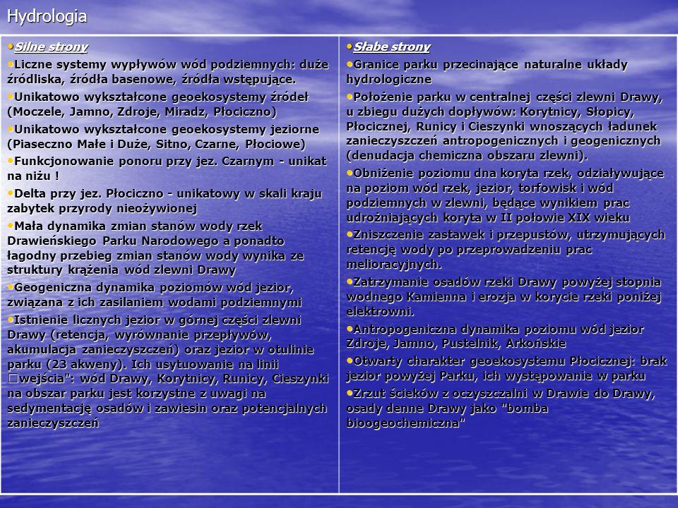 Hydrologia Silne strony Silne strony Liczne systemy wypływów wód podziemnych: duże źródliska, źródła basenowe, źródła wstępujące. Liczne systemy wypły