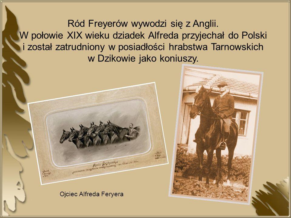 Ojciec Alfreda również pełnił funkcję koniuszego w majątku Tarnowskich.