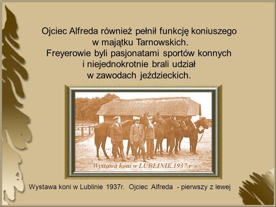 Ojciec Alfreda również pełnił funkcję koniuszego w majątku Tarnowskich. Freyerowie byli pasjonatami sportów konnych i niejednokrotnie brali udział w z