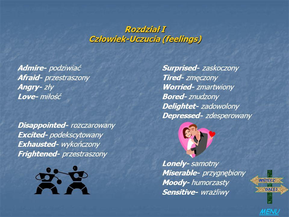 Rozdział I Człowiek-Cechy charakteru (personality) Aggressive- agresywnyHelpful- pomocny Ambitious- ambitnyHonest- uczciwy Arrogant- aroganckiNice- mi