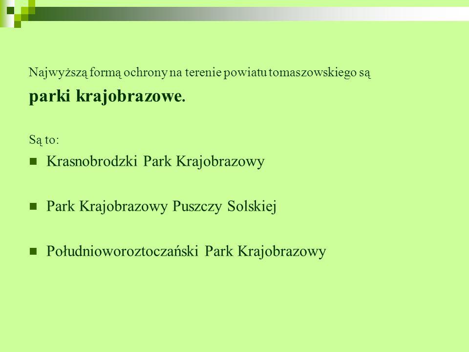 Najwyższą formą ochrony na terenie powiatu tomaszowskiego są parki krajobrazowe. Są to: Krasnobrodzki Park Krajobrazowy Park Krajobrazowy Puszczy Sols