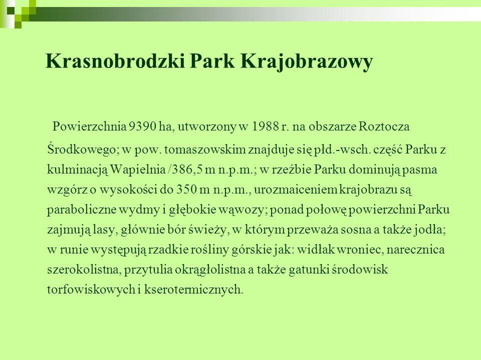 Krasnobrodzki Park Krajobrazowy Powierzchnia 9390 ha, utworzony w 1988 r. na obszarze Roztocza Środkowego; w pow. tomaszowskim znajduje się płd.-wsch.