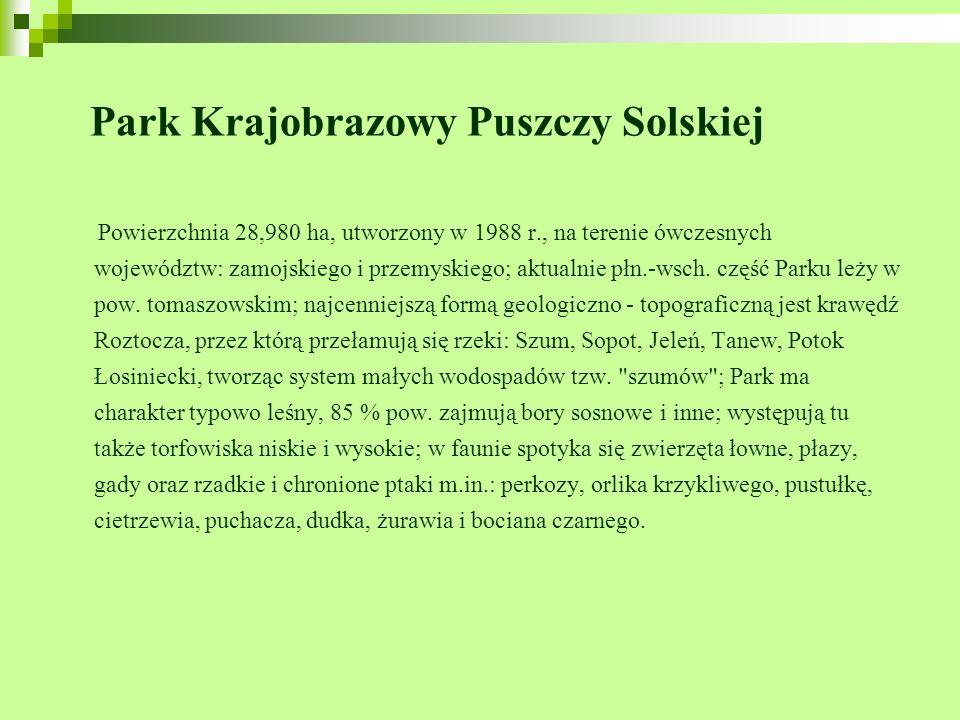 Park Krajobrazowy Puszczy Solskiej Powierzchnia 28,980 ha, utworzony w 1988 r., na terenie ówczesnych województw: zamojskiego i przemyskiego; aktualni