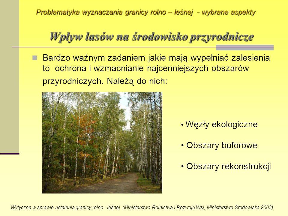 Bardzo ważnym zadaniem jakie mają wypełniać zalesienia to ochrona i wzmacnianie najcenniejszych obszarów przyrodniczych. Należą do nich: Problematyka