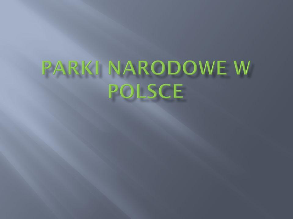 Park utworzono w 1954r Znajduje się w województwie małopolskim.