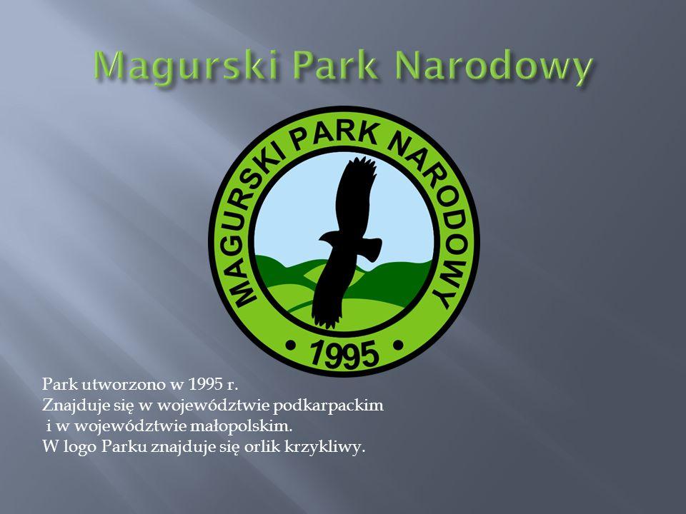 Park utworzono w 1995 r. Znajduje się w województwie podkarpackim i w województwie małopolskim. W logo Parku znajduje się orlik krzykliwy.
