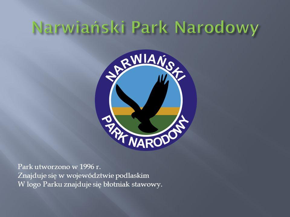 Park utworzono w 1996 r. Znajduje się w województwie podlaskim W logo Parku znajduje się błotniak stawowy.