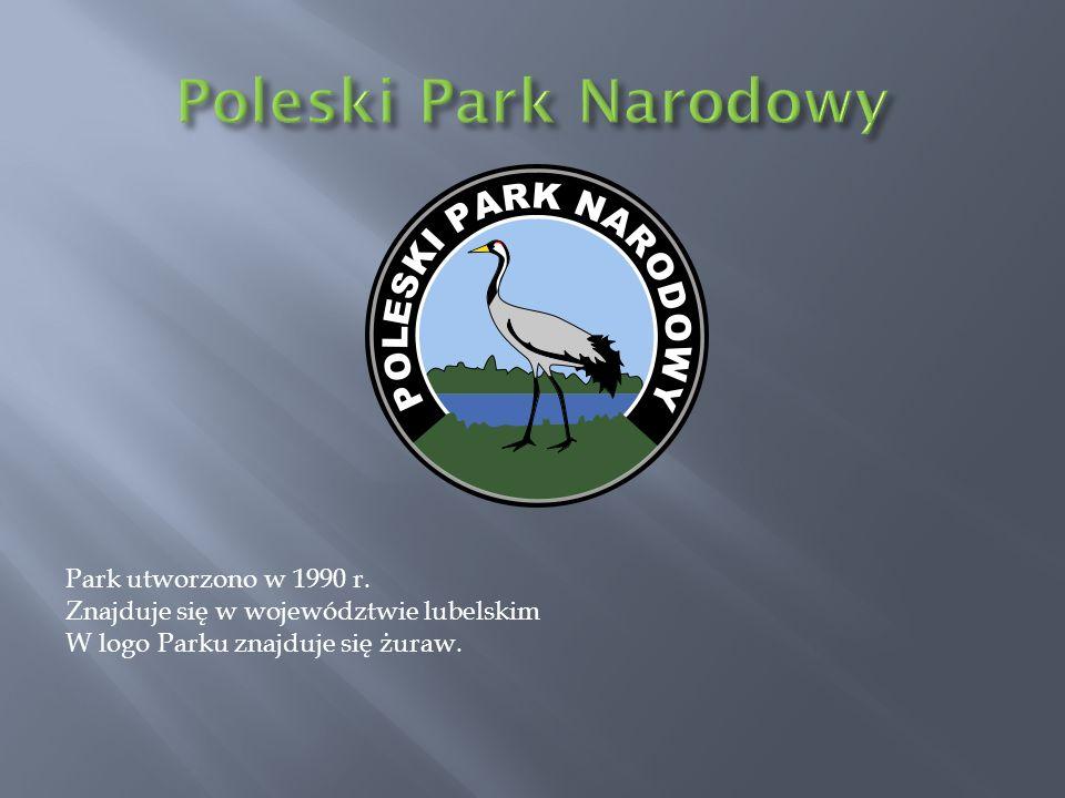 Park utworzono w 1990 r. Znajduje się w województwie lubelskim W logo Parku znajduje się żuraw.