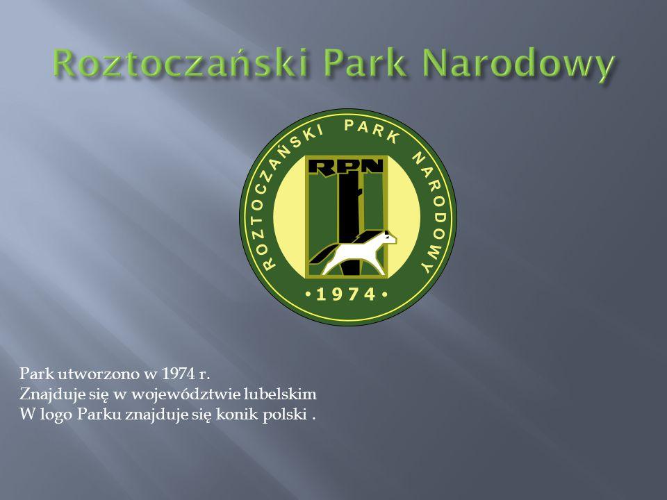 Park utworzono w 1974 r. Znajduje się w województwie lubelskim W logo Parku znajduje się konik polski.