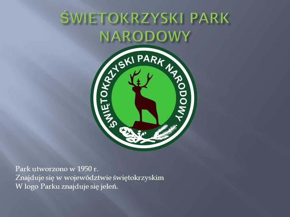 Park utworzono w 1950 r. Znajduje się w województwie świętokrzyskim W logo Parku znajduje się jeleń.