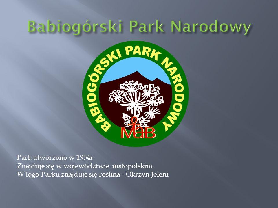 Park utworzono w 1954r Znajduje się w województwie małopolskim. W logo Parku znajduje się roślina - Okrzyn Jeleni