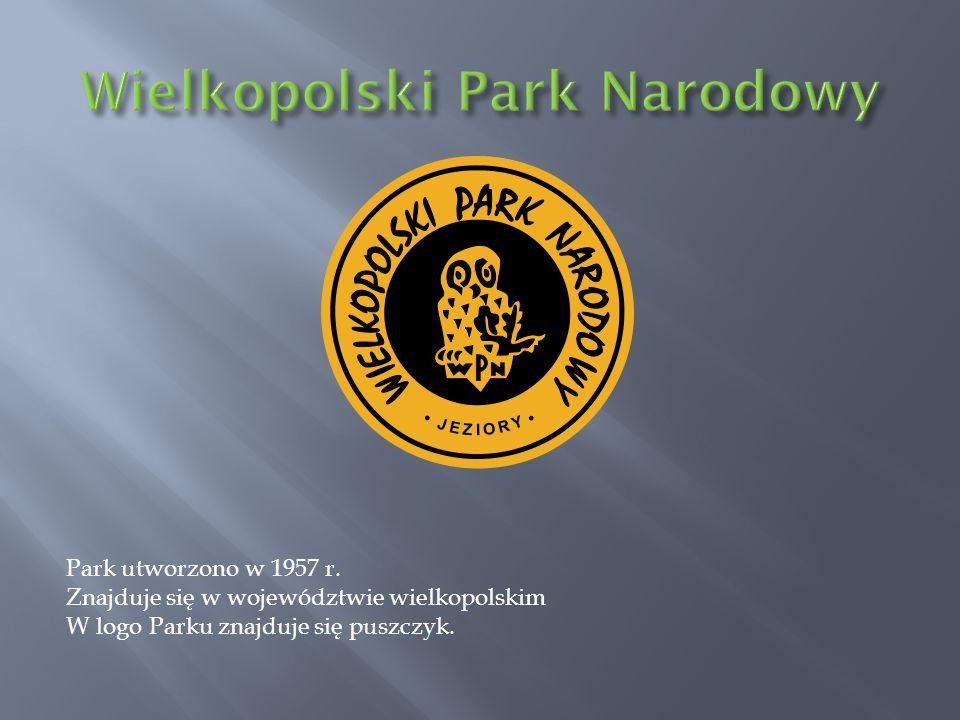 Park utworzono w 1957 r. Znajduje się w województwie wielkopolskim W logo Parku znajduje się puszczyk.