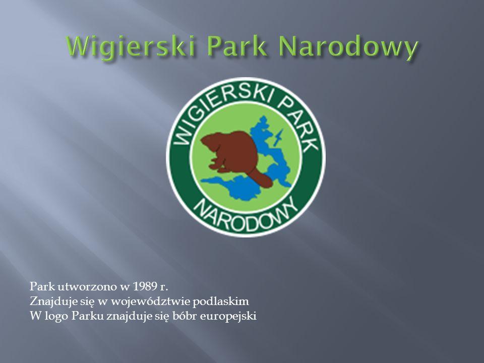 Park utworzono w 1989 r. Znajduje się w województwie podlaskim W logo Parku znajduje się bóbr europejski