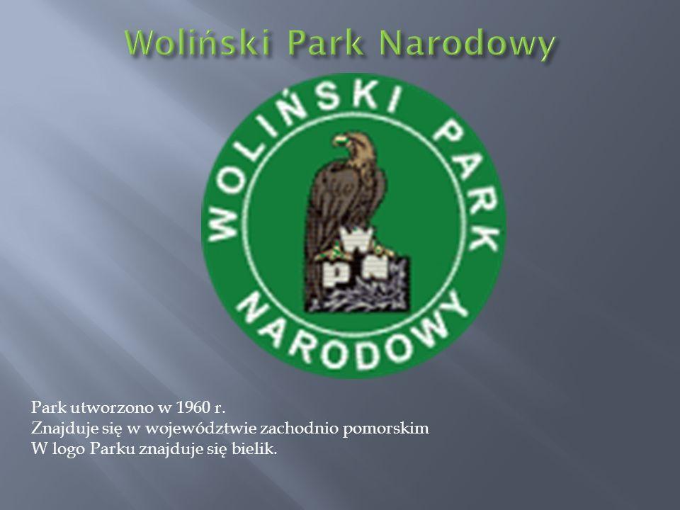 Park utworzono w 1960 r. Znajduje się w województwie zachodnio pomorskim W logo Parku znajduje się bielik.