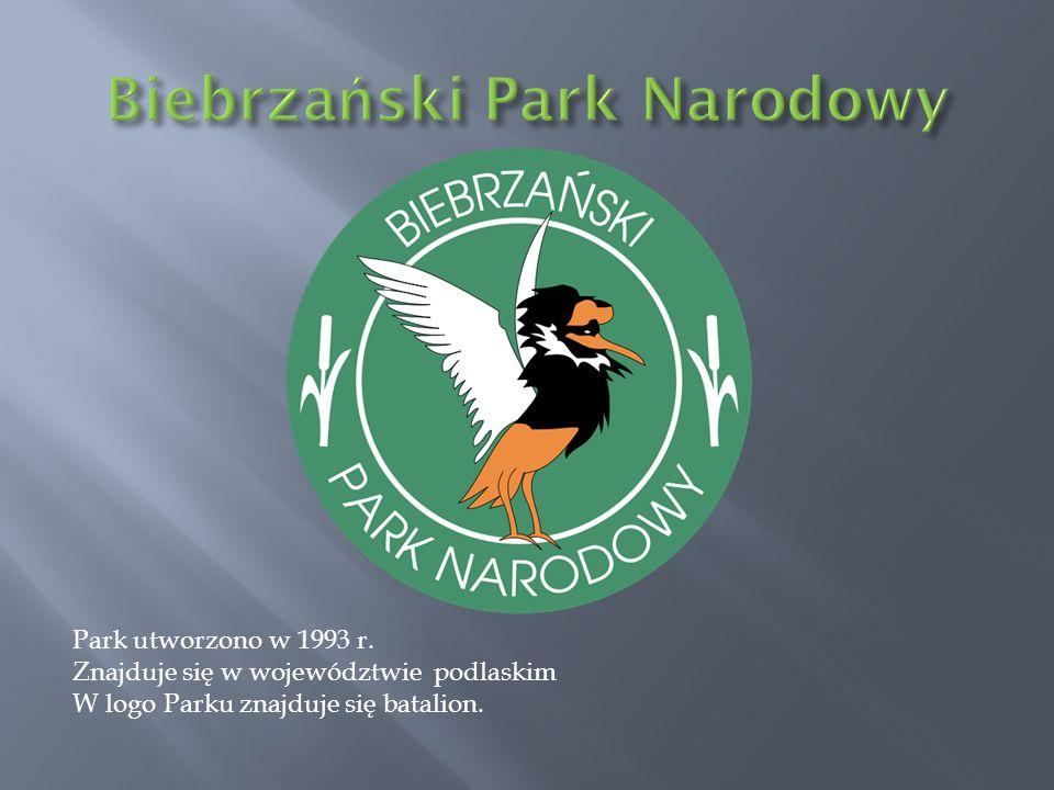 Park utworzono w 1993 r. Znajduje się w województwie podlaskim W logo Parku znajduje się batalion.