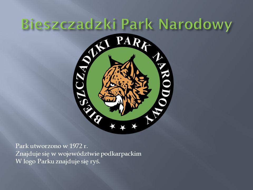 Park utworzono w 1972 r. Znajduje się w województwie podkarpackim W logo Parku znajduje się ryś.
