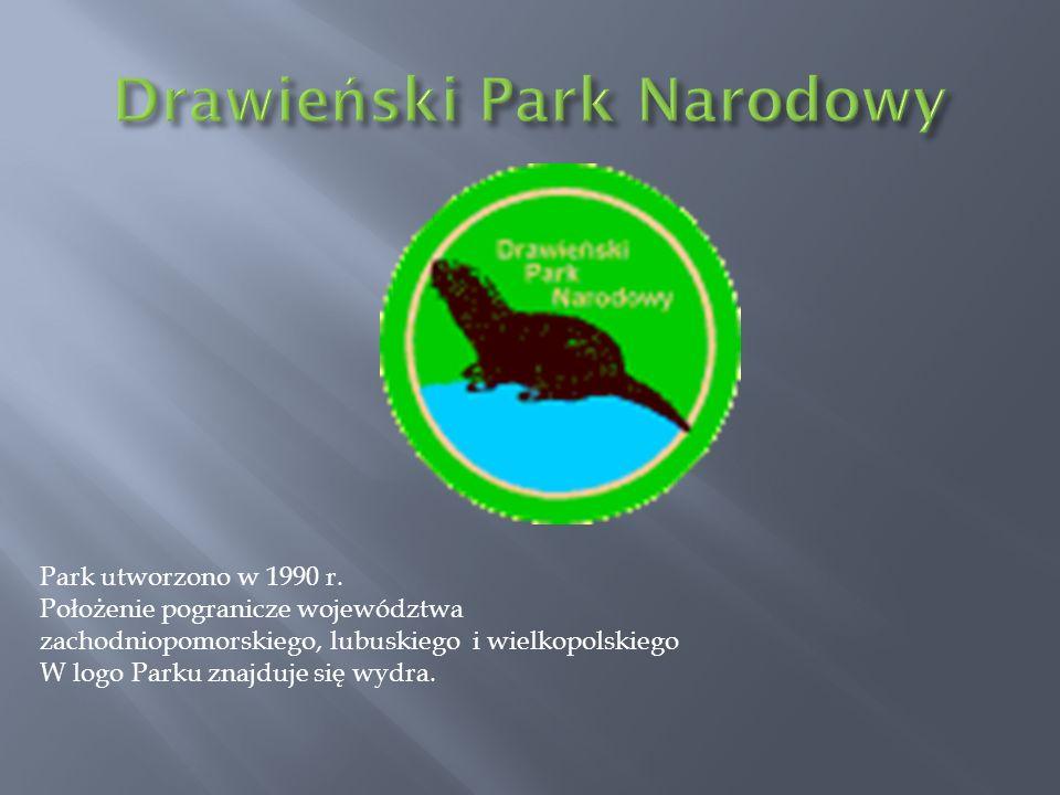 Park utworzono w 1990 r. Położenie pogranicze województwa zachodniopomorskiego, lubuskiego i wielkopolskiego W logo Parku znajduje się wydra.