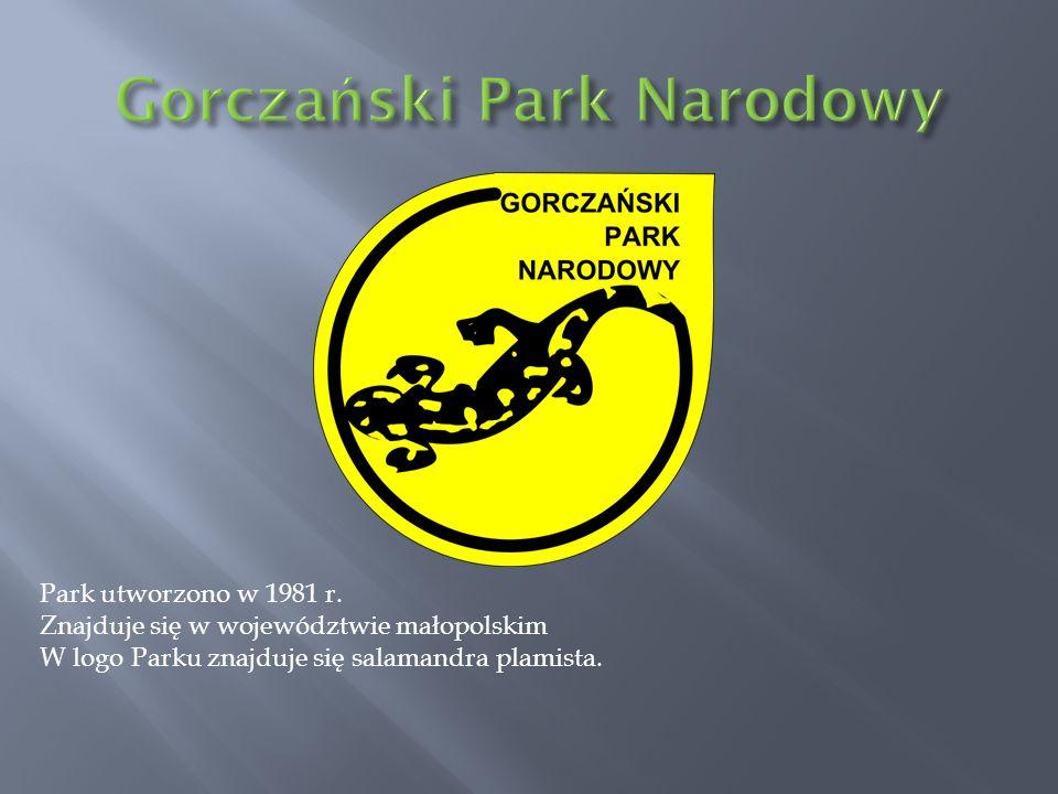 Park utworzono w 1981 r. Znajduje się w województwie małopolskim W logo Parku znajduje się salamandra plamista.