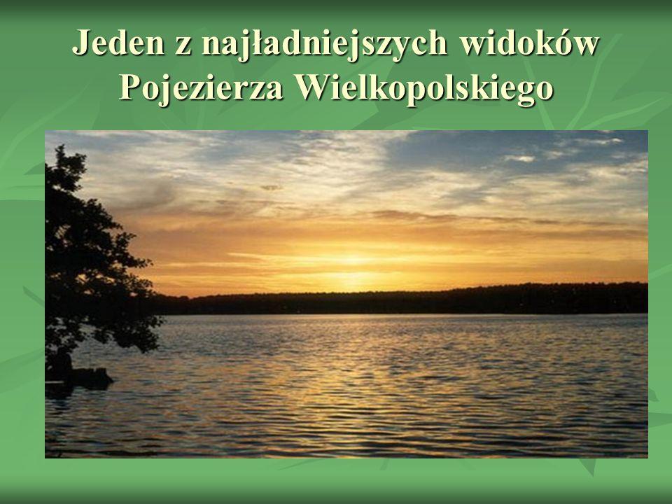 Jeden z najładniejszych widoków Pojezierza Wielkopolskiego