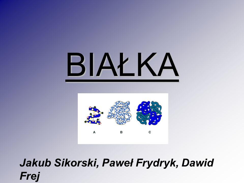 BIAŁKA Jakub Sikorski, Paweł Frydryk, Dawid Frej