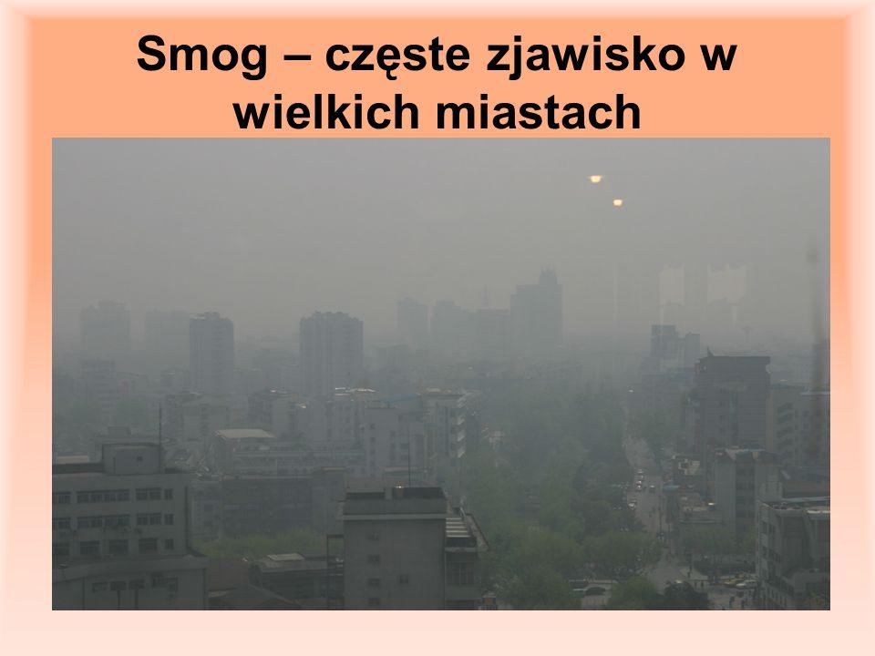 Smog – częste zjawisko w wielkich miastach