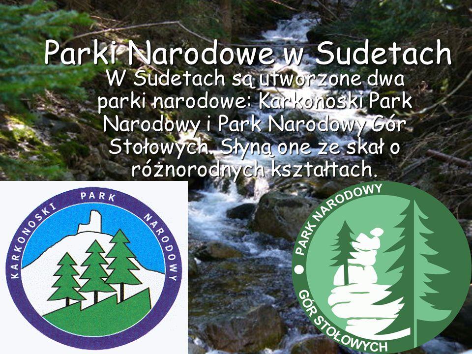 Parki Narodowe wSudetach W Sudetach są utworzone dwa parki narodowe: Karkonoski Park Narodowy i Park Narodowy Gór Stołowych. Słyną one ze skał o różno