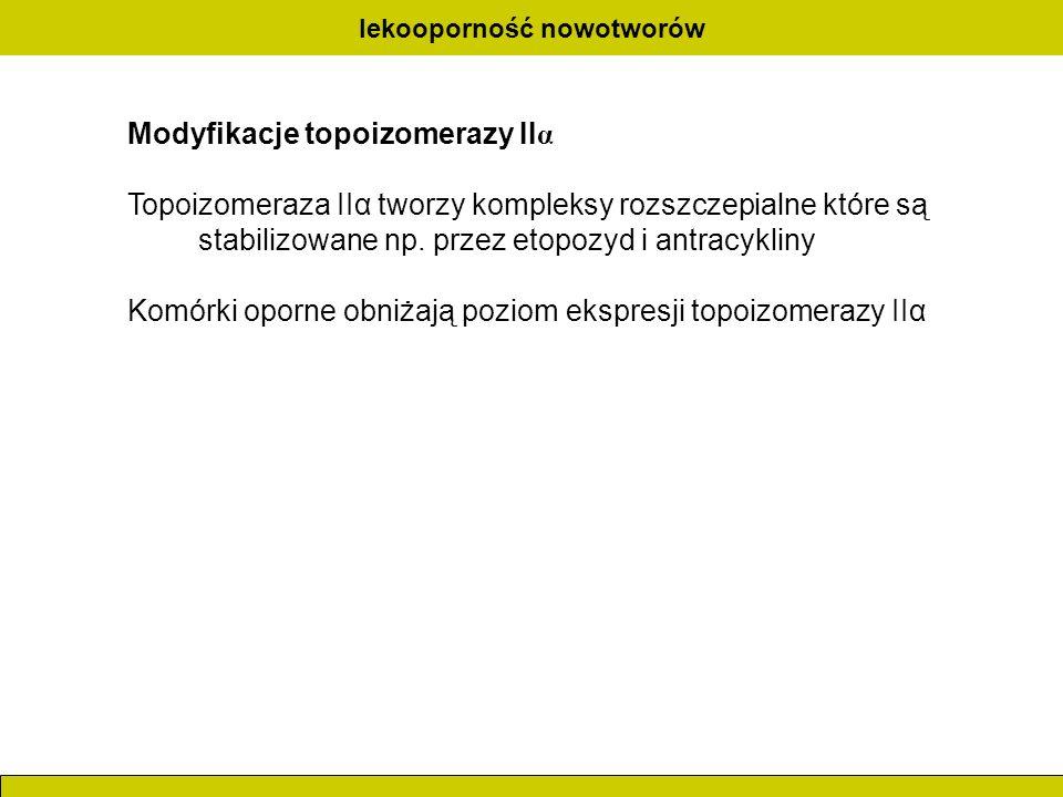 lekooporność nowotworów Modyfikacje topoizomerazy II α Topoizomeraza IIα tworzy kompleksy rozszczepialne które są stabilizowane np. przez etopozyd i a