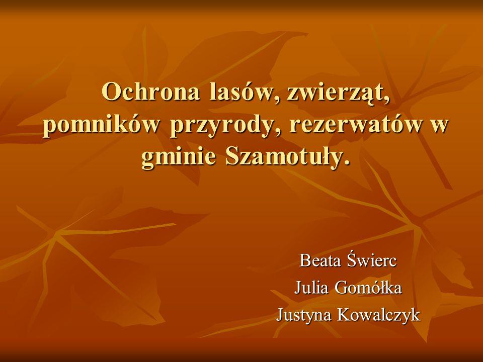 Ochrona lasów, zwierząt, pomników przyrody, rezerwatów w gminie Szamotuły. Beata Świerc Julia Gomółka Justyna Kowalczyk
