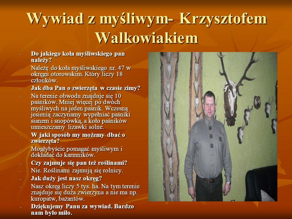 Wywiad z myśliwym- Krzysztofem Walkowiakiem - Do jakiego koła myśliwskiego pan należy? - Należę do koła myśliwskiego nr. 47 w okręgu otorowskim. Który
