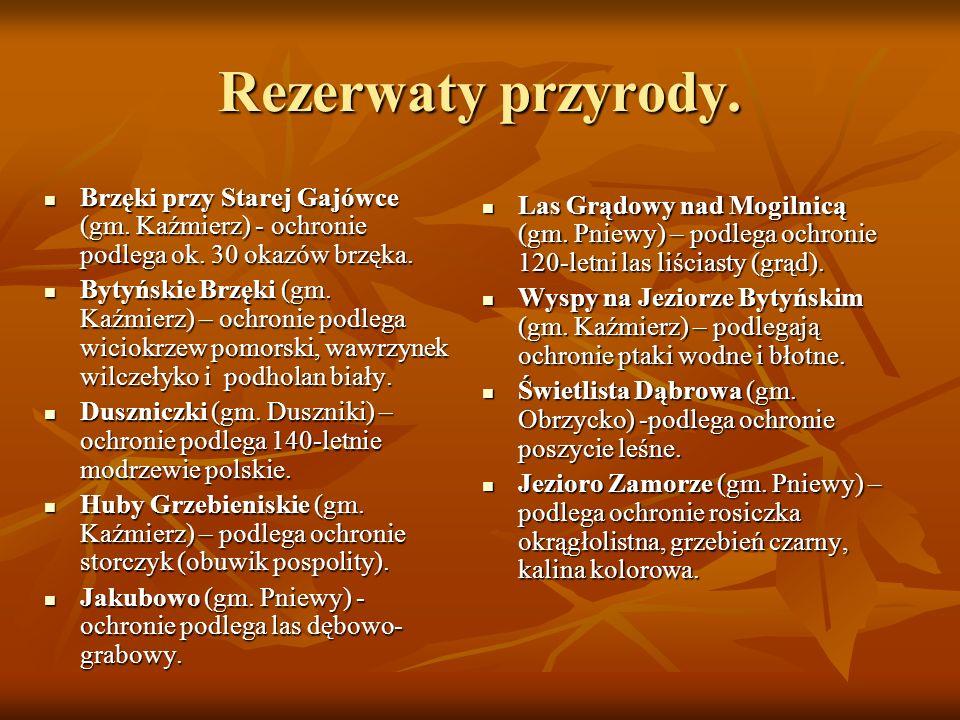 Rezerwaty przyrody. Brzęki przy Starej Gajówce (gm. Kaźmierz) - ochronie podlega ok. 30 okazów brzęka. Brzęki przy Starej Gajówce (gm. Kaźmierz) - och