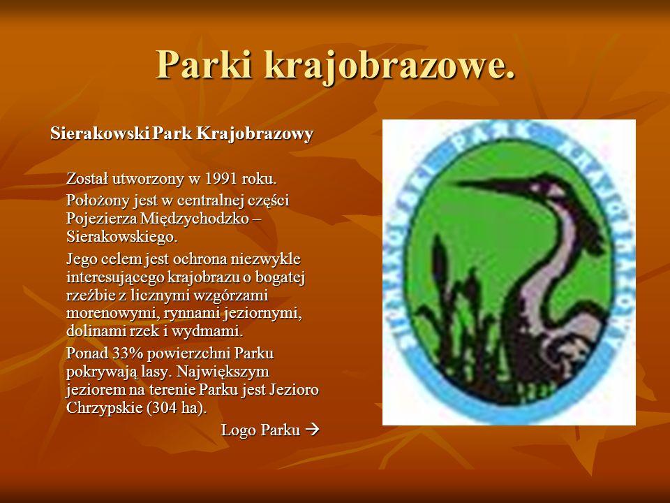 Parki krajobrazowe. Sierakowski Park Krajobrazowy Został utworzony w 1991 roku. Został utworzony w 1991 roku. Położony jest w centralnej części Pojezi