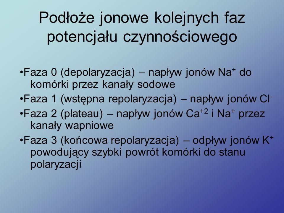 Podłoże jonowe kolejnych faz potencjału czynnościowego Faza 0 (depolaryzacja) – napływ jonów Na + do komórki przez kanały sodowe Faza 1 (wstępna repol
