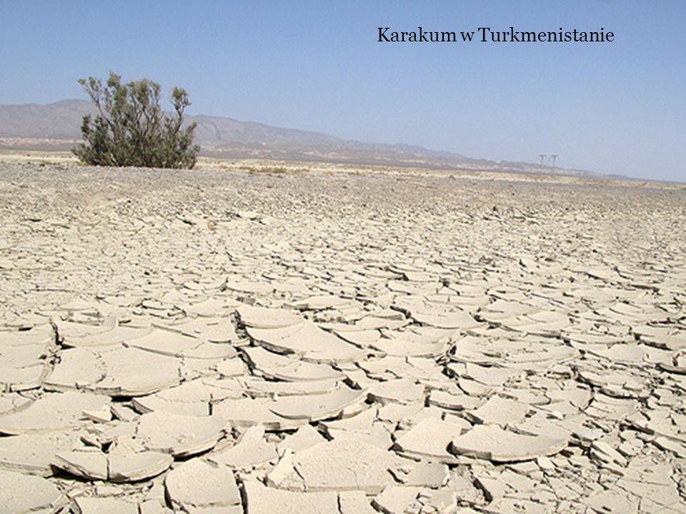 Karakum w Turkmenistanie