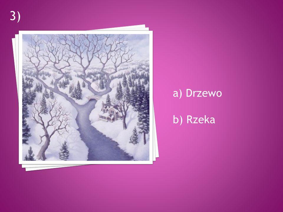a) Drzewo b) Rzeka 3)