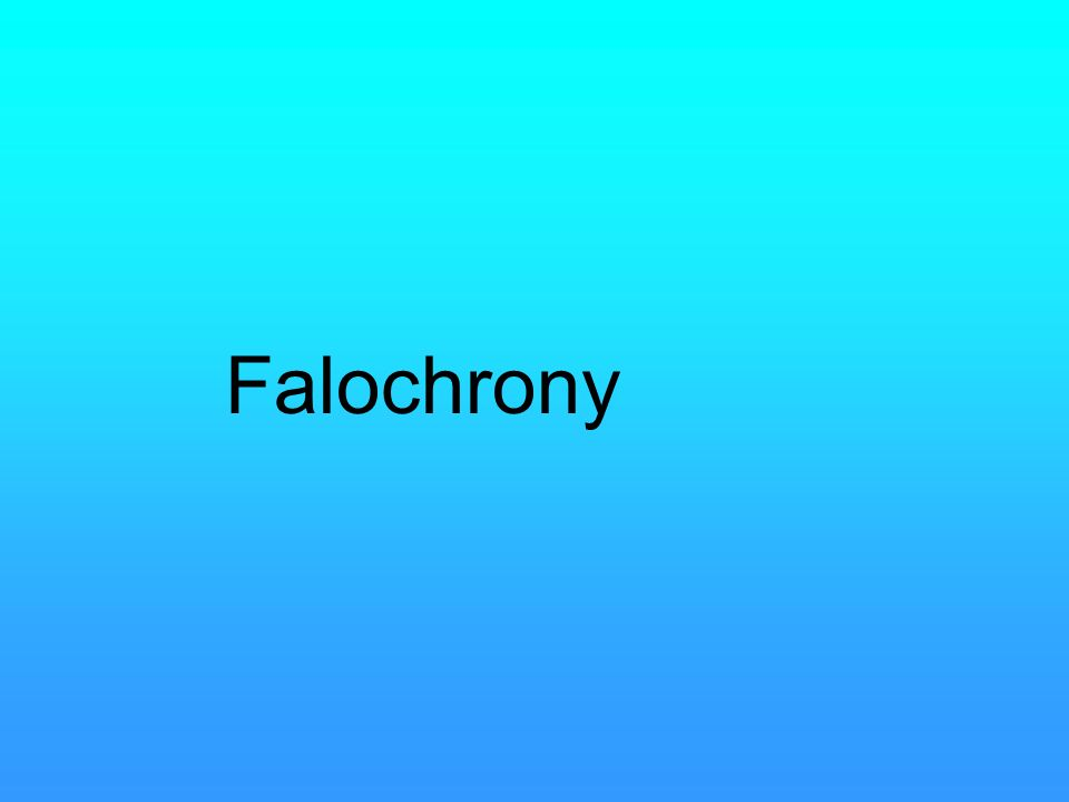 Falochrony