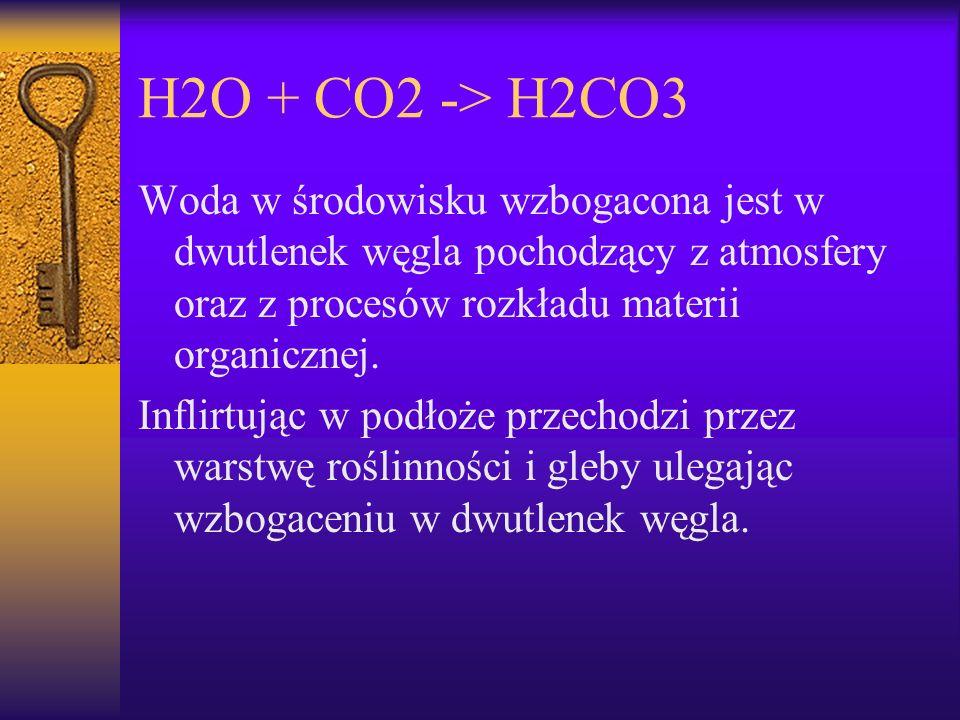 H2O + CO2 -> H2CO3 Woda w środowisku wzbogacona jest w dwutlenek węgla pochodzący z atmosfery oraz z procesów rozkładu materii organicznej. Inflirtują