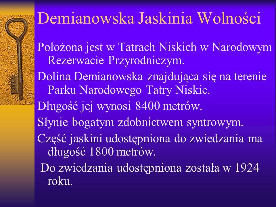 Demianowska Jaskinia Wolności Położona jest w Tatrach Niskich w Narodowym Rezerwacie Przyrodniczym. Dolina Demianowska znajdująca się na terenie Parku