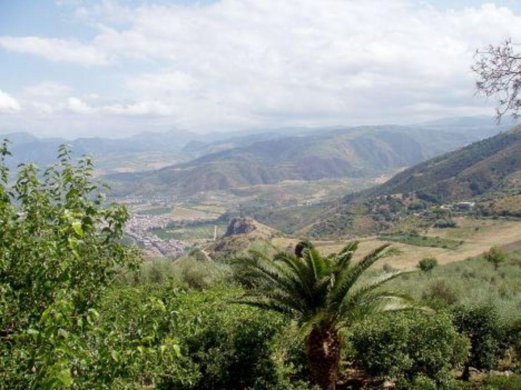 Klimat strefy śródziemnomorskiej W strefie śródziemnomorskiej występują dwie pory roku: gorące i suche lato, oraz ciepła i wilgotna zima.