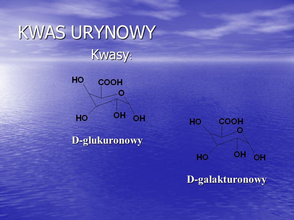 KWAS URYNOWY Kwasy : Kwasy : D-glukuronowy D-galakturonowy