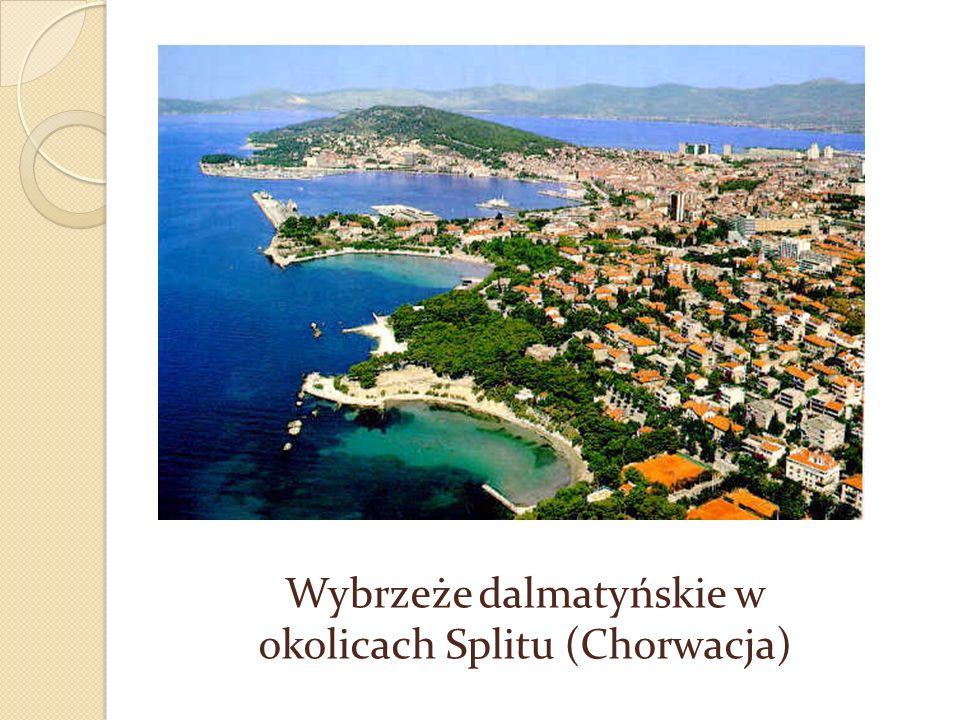 Wybrzeże dalmatyńskie Typ wybrzeża morskiego wysokiego, które powstało w wyniku zalania gór ułożonych równolegle do linii brzegowej. Powstaje w ten sp