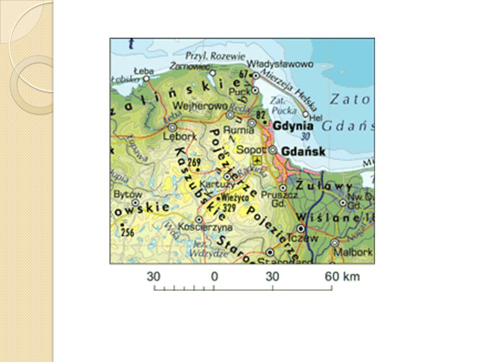 Wybrzeże zalewowe Wybrzeża zalewowe powstają w pobliżu miejsc, gdzie rzeki wpadają do morza. Na Pomorzu Zachodnim największy jest Zalew Szczeciński po