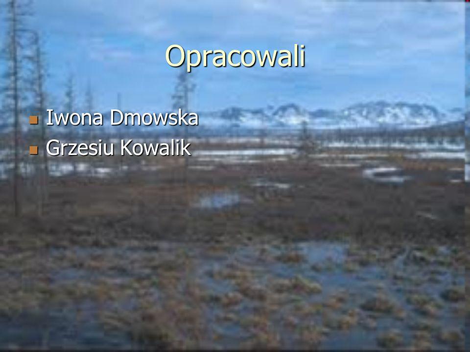 Opracowali Iwona Dmowska Iwona Dmowska Grzesiu Kowalik Grzesiu Kowalik
