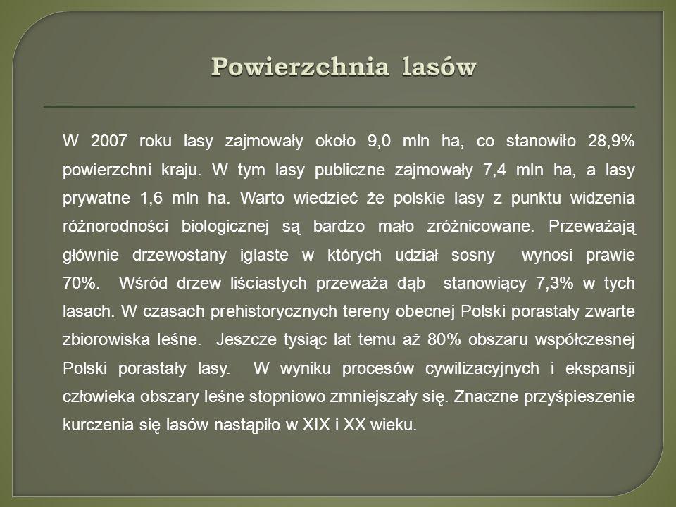 Źródła: www.ciekawostki.rolnicy.com www.wikipedia.com www.szkolnictwo.pl www.geografia.na6.pl http://www.geomatura.pl Książka do geografii Google grafika